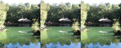 0707_forest_pond_lrl
